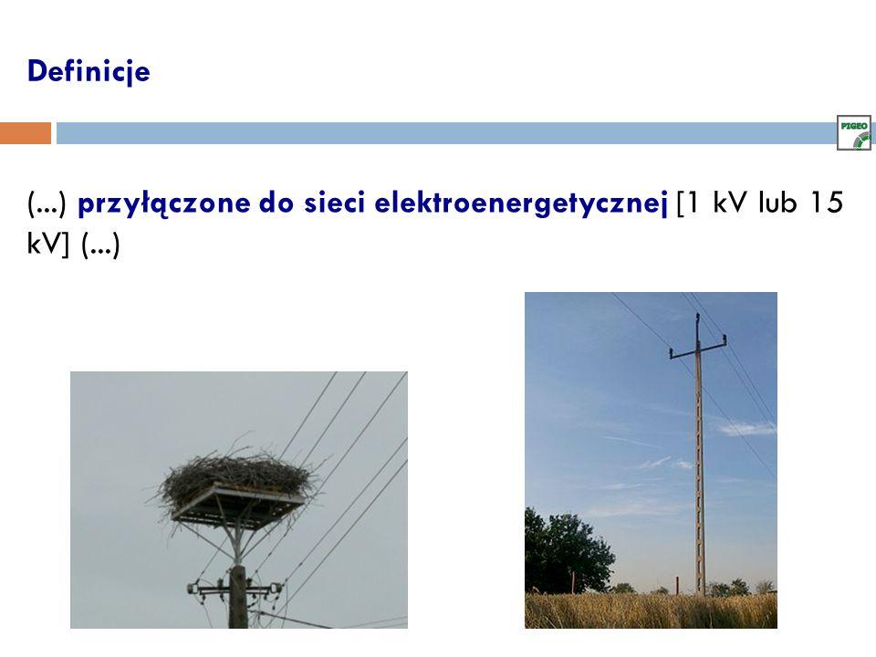 Definicje (...) przyłączone do sieci elektroenergetycznej [1 kV lub 15 kV] (...)